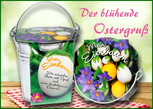 Gratis aktion vor ostern der eierbaum im zinkeimer for Geschenke versandhaus